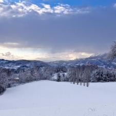 Snow LR (4 of 5)
