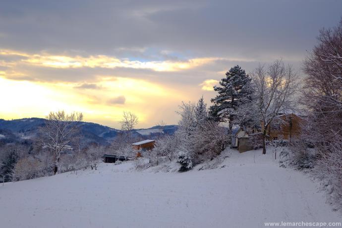 Snow LR (5 of 5)