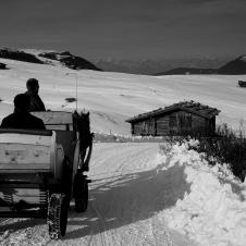 Trentino (10 of 20)
