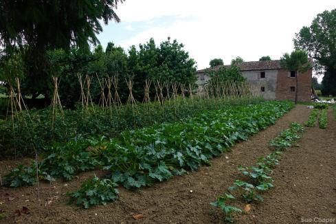Bellaria (46 of 66)