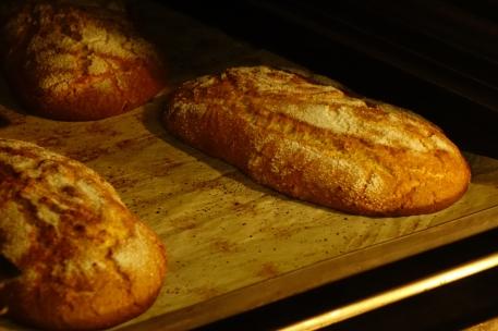 bakery-cantina-20-of-21